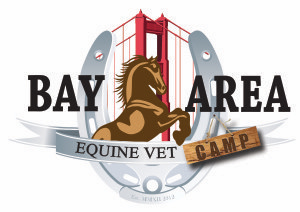 Bay Area Equine Veterinary Medicine Camp